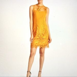 Nannette Lepore 🔥mesh 🔥Medieval Gold Lace Dress